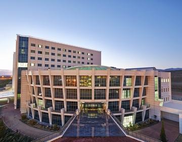 Ближневосточный университетский госпиталь в Никосии