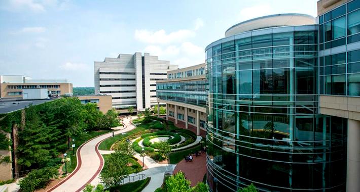 Университетская больница Michigan Medicine